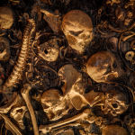 MURDER – A gyilkos tárlat – Vélemények: 02